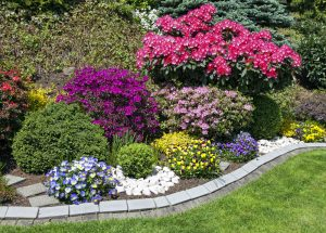 Beautify With Garden Plants Landscaping San Jose